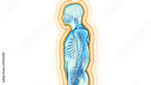 Immune system defence, body loop rotation on white background