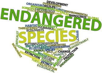 Word cloud for Endangered species