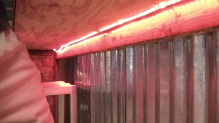 Pink Neon Lights Under Bar