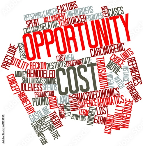 Word cloud for Opportunity cost