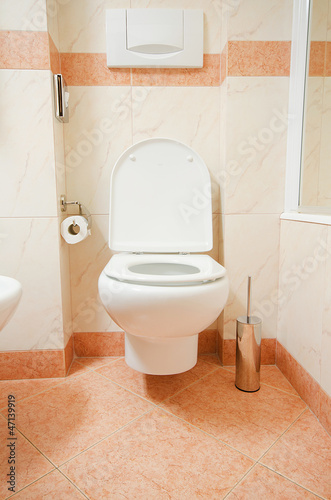 Toilet in the modern bathroom