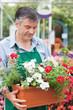 Gardener holding boxes of plants