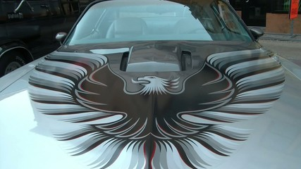 Trans Am Firebird on Hood