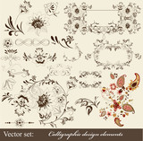 Calligraphic decorative elements in vintage style