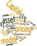 Word cloud for Capital asset pricing model poster