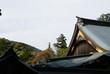 日本建築と自然の調和