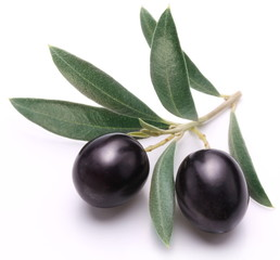 Ripe black olives with leaves.