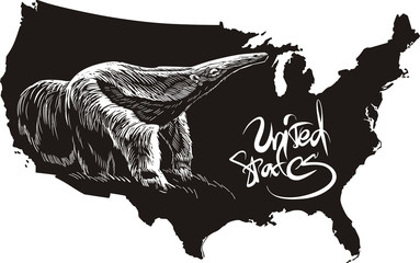 Anteater and U.S. outline map