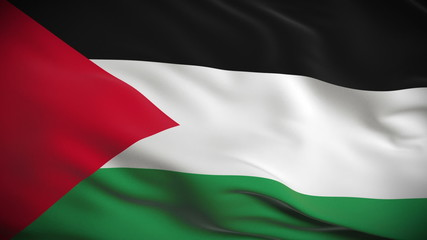 Highly detailed flag of Palestine. Looped.