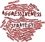 Word cloud for Aggressiveness strategy