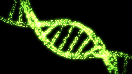 Appearing and dissapearing DNA helix