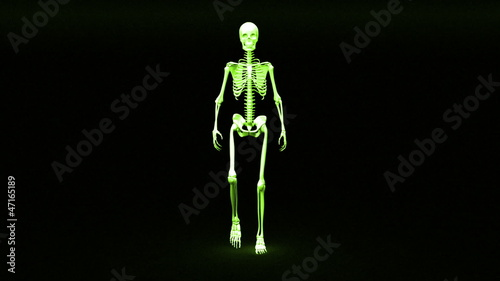 Walking skeleton appears and becomes fully formed human