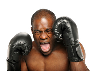 Young African American Boxer screaming