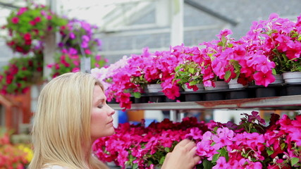 Woman working at the garden centre at the flower shelf