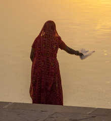 woman feeds the fishes in the holy lake in Pushkar