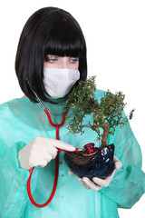 Female doctor using stethoscope on bonsai