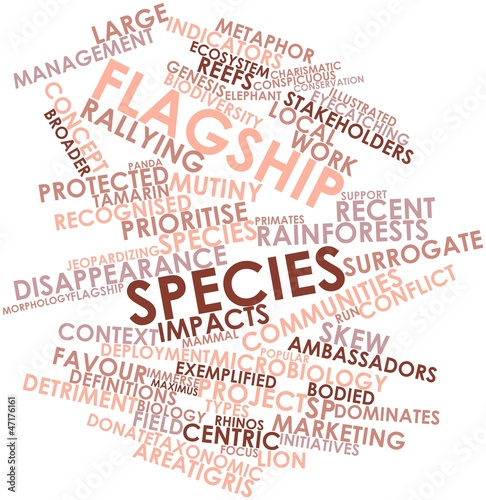 Word cloud for Flagship species