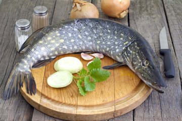 Pike raw fish preparation to baking in the kitchen