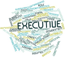 Word cloud for Executive