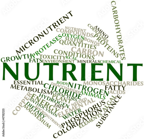 Word cloud for Nutrient