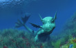 bébé dragon dans l'océan