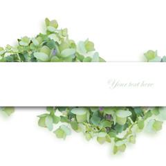 緑系の花、中心書き込み欄あり