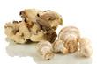 Fresh mushrooms isolated on white
