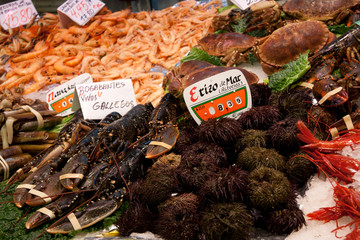 Fish Market stall in Madrid - Fresh Sea urchin and crustacean
