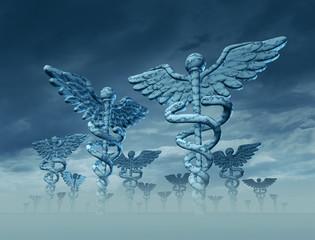 Medicine Landscape