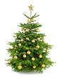 Dichter, gold geschmückter Weihnachtsbaum
