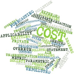 Word cloud for Cost