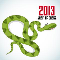 Snake. Symbol of new 2013 year