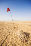 Tunisian flag in the Sahara desert, Tunisia