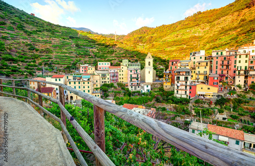 Panoramic view of Manarola village