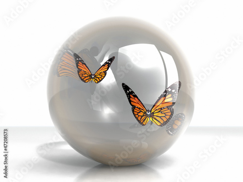 the beautiful butterfly in a bubble