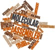 Word cloud for Molecular assembler