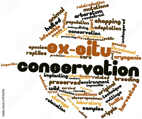 Word cloud for Ex-situ conservation
