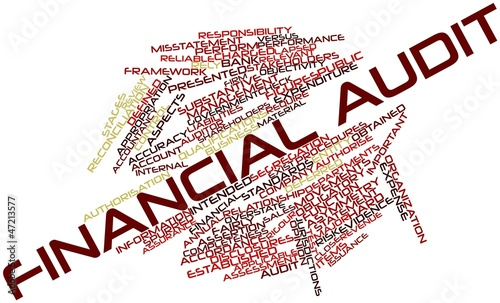 Word cloud for Financial audit