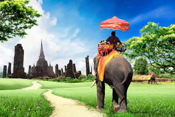travel concept, tourists on an elephant
