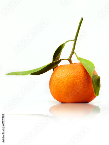 Isolated tangerine with leaves on white background