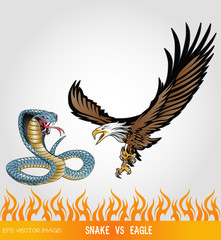 eps Vector image:SNAKE vs EAGLE