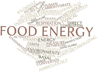 Word cloud for Food energy