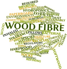 Word cloud for Wood fibre