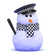 Officer Snowman patrols the garden