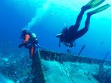 divers explore a wrack