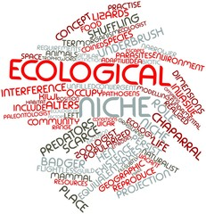 Word cloud for Ecological niche