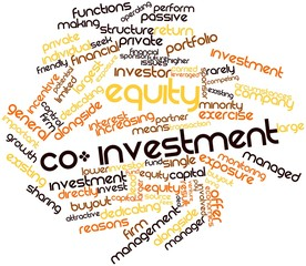 Word cloud for Equity co-investment
