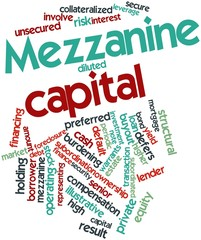 Word cloud for Mezzanine capital