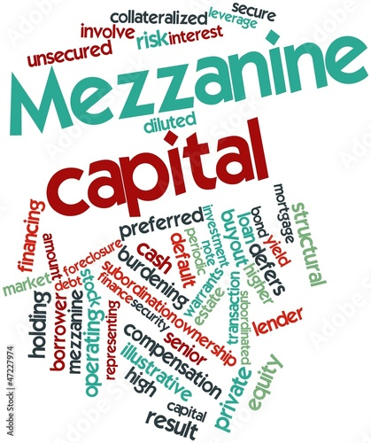 Word cloud for Mezzanine capital