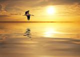 Fototapeta lago - pejzaż - Zachód / Wschód Słońca
